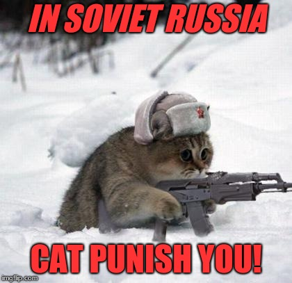Cute Sad Soviet War Kitten | IN SOVIET RUSSIA CAT PUNISH YOU! | image tagged in cute sad soviet war kitten | made w/ Imgflip meme maker