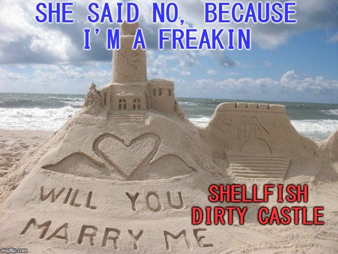 wife's a beach | SHE SAID NO, BECAUSE I'M A FREAKIN SHELLFISH DIRTY CASTLE | image tagged in castle,castaway,memes,funny,getting married | made w/ Imgflip meme maker