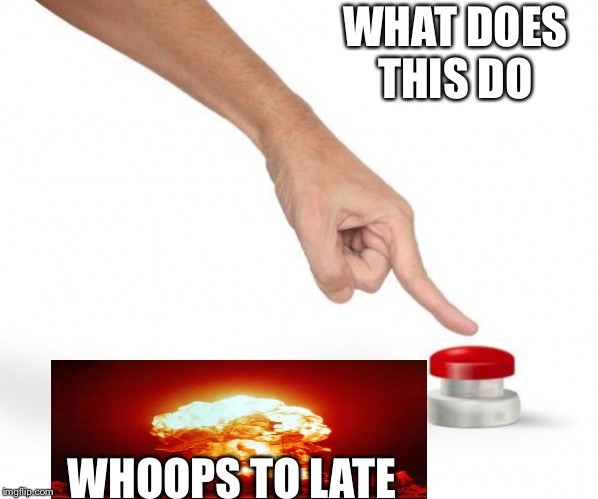 End of world | WHAT DOES THIS DO WHOOPS TO LATE | image tagged in big red button | made w/ Imgflip meme maker