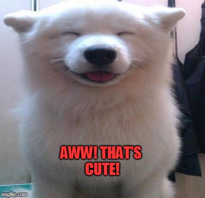 AWW! THAT'S CUTE! | made w/ Imgflip meme maker