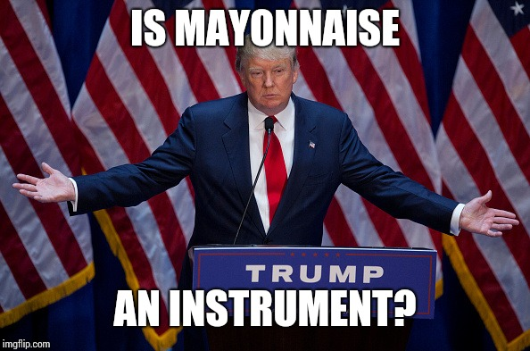 Mayonnaise Trump | IS MAYONNAISE AN INSTRUMENT? | image tagged in donald trump | made w/ Imgflip meme maker