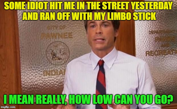 Visual and word pun? | SOME IDIOT HIT ME IN THE STREET YESTERDAY AND RAN OFF WITH MY LIMBO STICK I MEAN REALLY, HOW LOW CAN YOU GO? | image tagged in rob lowe literally,memes,funny | made w/ Imgflip meme maker