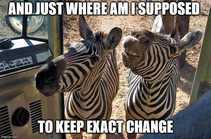 What do you mean this bus doesn't have a bar-code reader ? | AND JUST WHERE AM I SUPPOSED TO KEEP EXACT CHANGE | image tagged in memes,zebras on the bus | made w/ Imgflip meme maker