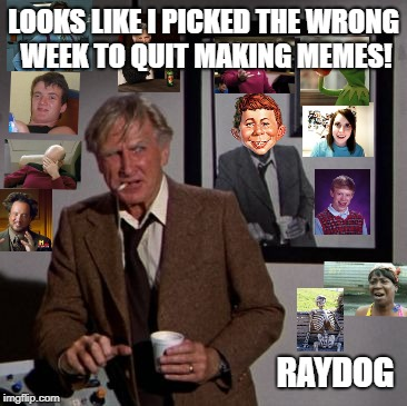 Looks like I picked the wrong week | LOOKS LIKE I PICKED THE WRONG WEEK TO QUIT MAKING MEMES! RAYDOG | image tagged in looks like i picked the wrong week | made w/ Imgflip meme maker