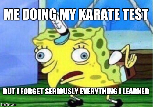 me doing one of my karate tests | ME DOING MY KARATE TEST BUT I FORGET SERIOUSLY EVERYTHING I LEARNED | image tagged in memes,mocking spongebob | made w/ Imgflip meme maker