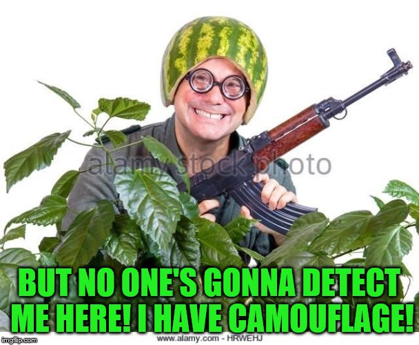 BUT NO ONE'S GONNA DETECT ME HERE! I HAVE CAMOUFLAGE! | made w/ Imgflip meme maker