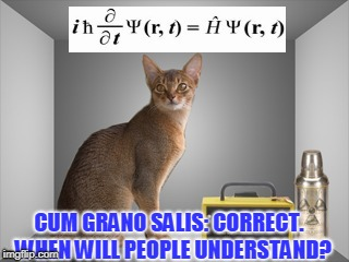 CUM GRANO SALIS: CORRECT.  WHEN WILL PEOPLE UNDERSTAND? | made w/ Imgflip meme maker