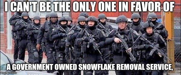 Anti gun  | I CAN'T BE THE ONLY ONE IN FAVOR OF A GOVERNMENT OWNED SNOWFLAKE REMOVAL SERVICE, | image tagged in anti gun | made w/ Imgflip meme maker