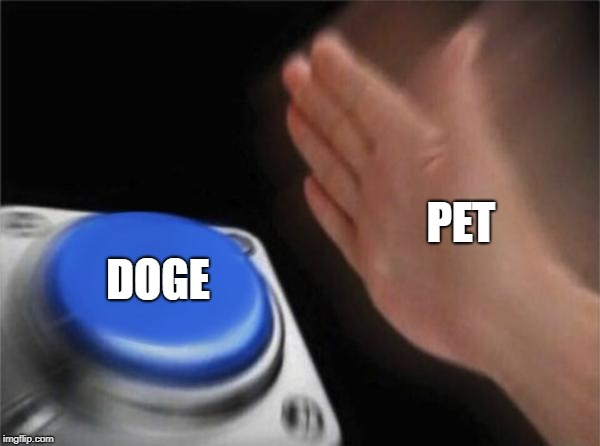 Blank Nut Button Meme | PET DOGE | image tagged in memes,blank nut button | made w/ Imgflip meme maker