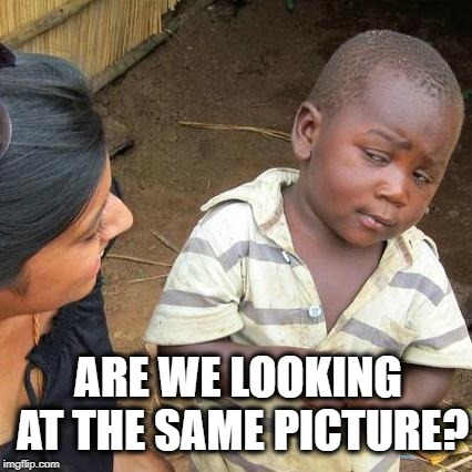 Third World Skeptical Kid Meme | ARE WE LOOKING AT THE SAME PICTURE? | image tagged in memes,third world skeptical kid | made w/ Imgflip meme maker