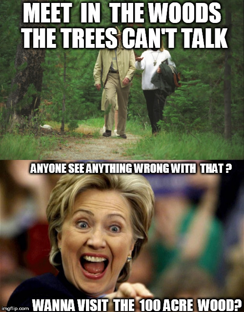 hillary  up  to  hillary  stuff | MEET  IN  THE WOODS THE TREES CAN'T TALK ANYONE SEE ANYTHING WRONG WITH  THAT ? WANNA VISIT  THE  100 ACRE  WOOD? | image tagged in hillary clinton,100 acre  wood,visit | made w/ Imgflip meme maker