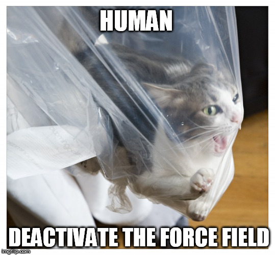 It seems to be some kind of impenetrable force-field | HUMAN DEACTIVATE THE FORCE FIELD | image tagged in force,field,cat,meme,funny | made w/ Imgflip meme maker