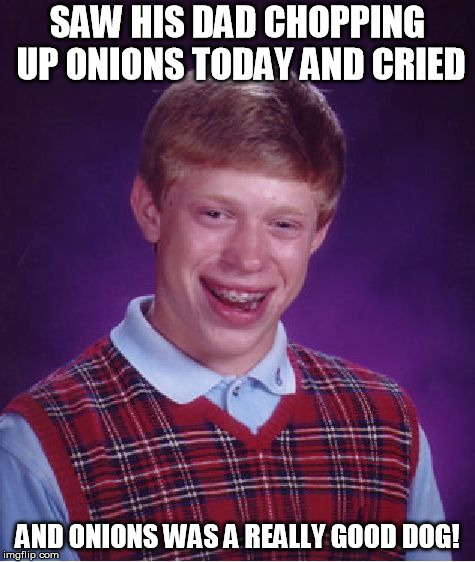 Bad Luck Brian Meme | SAW HIS DAD CHOPPING UP ONIONS TODAY AND CRIED AND ONIONS WAS A REALLY GOOD DOG! | image tagged in memes,bad luck brian | made w/ Imgflip meme maker