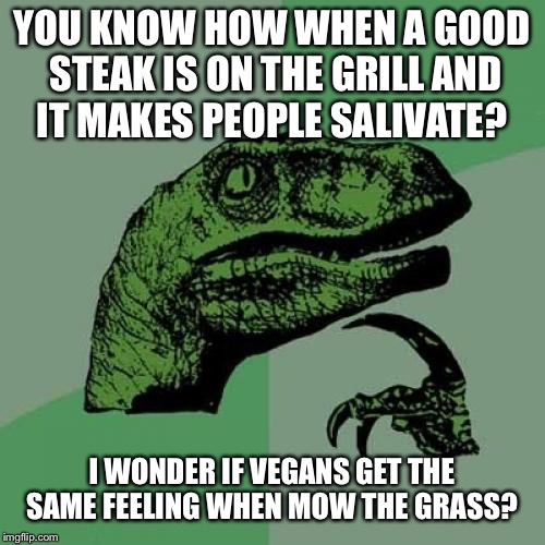 Philosoraptor Meme | YOU KNOW HOW WHEN A GOOD STEAK IS ON THE GRILL AND IT MAKES PEOPLE SALIVATE? I WONDER IF VEGANS GET THE SAME FEELING WHEN MOW THE GRASS? | image tagged in memes,philosoraptor | made w/ Imgflip meme maker