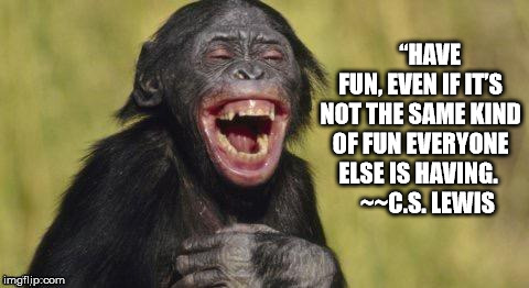 "You only live once.......have fun doing it! | ""HAVE FUN, EVEN IF IT'S NOT THE SAME KIND OF FUN EVERYONE ELSE IS HAVING.    ~~C.S. LEWIS 