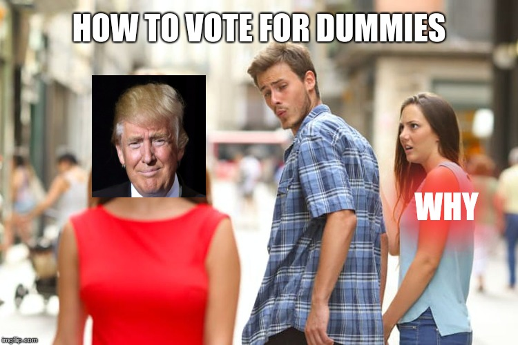 Distracted Boyfriend Meme | WHY HOW TO VOTE FOR DUMMIES | image tagged in memes,distracted boyfriend | made w/ Imgflip meme maker