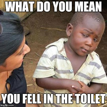 Just wow | WHAT DO YOU MEAN YOU FELL IN THE TOILET | image tagged in memes,third world skeptical kid | made w/ Imgflip meme maker