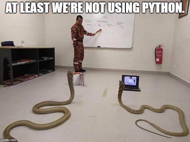 AT LEAST WE'RE NOT USING PYTHON. | image tagged in teaching python programming | made w/ Imgflip meme maker