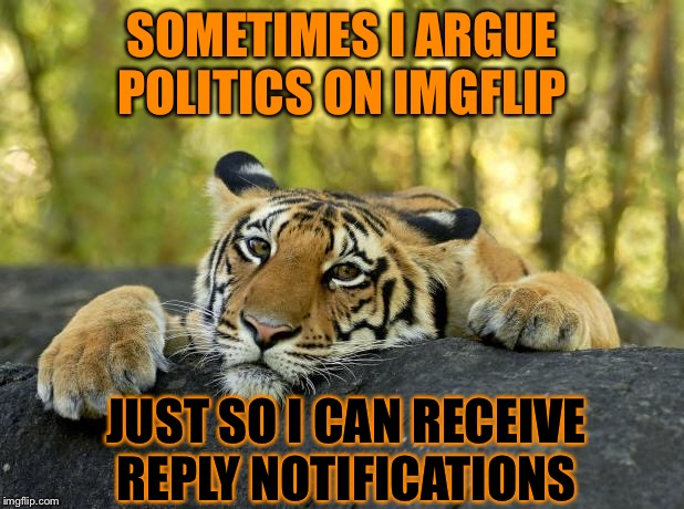 Confession Tiger | SOMETIMES I ARGUE POLITICS ON IMGFLIP JUST SO I CAN RECEIVE REPLY NOTIFICATIONS | image tagged in confession tiger,politics | made w/ Imgflip meme maker
