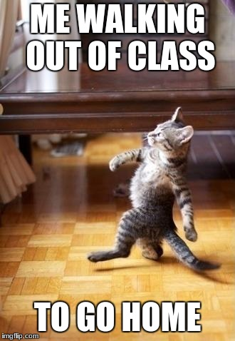 Cool Cat Stroll Meme | ME WALKING OUT OF CLASS TO GO HOME | image tagged in memes,cool cat stroll | made w/ Imgflip meme maker