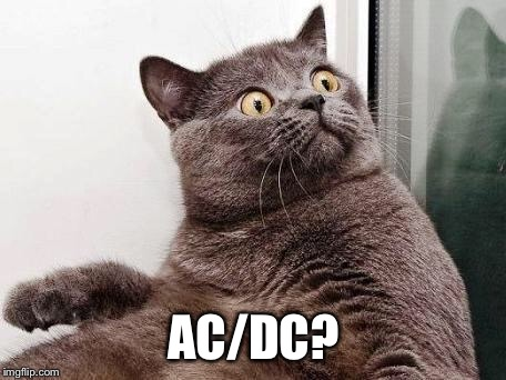 surprised cat | AC/DC? | image tagged in surprised cat | made w/ Imgflip meme maker