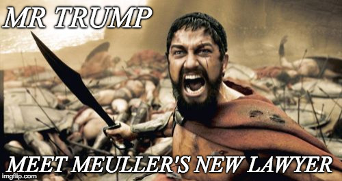 Sparta Leonidas Meme | MR TRUMP MEET MEULLER'S NEW LAWYER | image tagged in memes,sparta leonidas | made w/ Imgflip meme maker