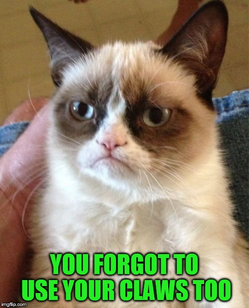 Grumpy Cat Meme | YOU FORGOT TO USE YOUR CLAWS TOO | image tagged in memes,grumpy cat | made w/ Imgflip meme maker