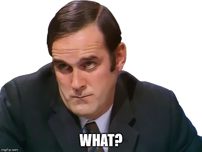 John Cleese | WHAT? | image tagged in john cleese | made w/ Imgflip meme maker