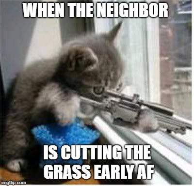 cats with guns | WHEN THE NEIGHBOR IS CUTTING THE GRASS EARLY AF | image tagged in cats with guns | made w/ Imgflip meme maker