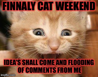 Cat Weekend March 11-13 a  Landon_the _memer, 1forpeace, and JBmemegeek event | FINNALY CAT WEEKEND IDEA'S SHALL COME AND FLOODING OF COMMENTS FROM ME | image tagged in memes,excited cat,meme,masqurade_,cat weekend,at last a meme | made w/ Imgflip meme maker
