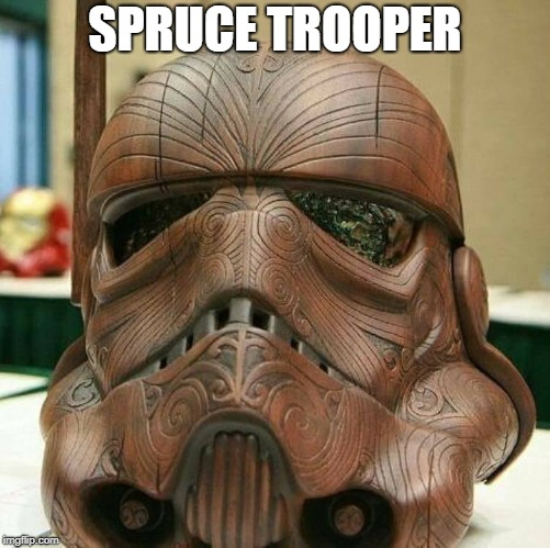 SPRUCE TROOPER | image tagged in spruce trooper,stormtrooper,wood,art | made w/ Imgflip meme maker