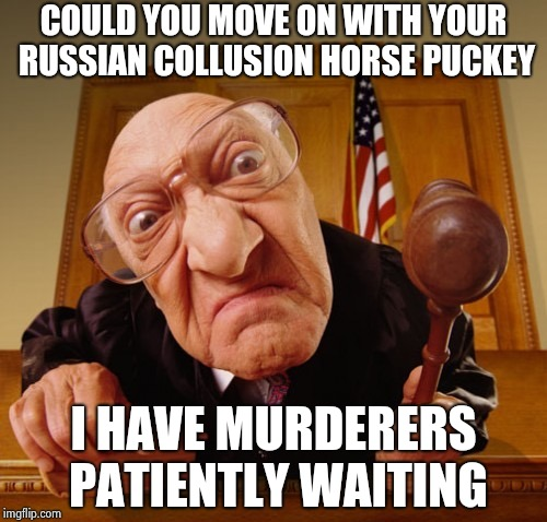 Mueller , you pettifog , stop asking the same questions over and over | COULD YOU MOVE ON WITH YOUR RUSSIAN COLLUSION HORSE PUCKEY I HAVE MURDERERS PATIENTLY WAITING | image tagged in judge fisheye lens,your argument is invalid,russian investigation,silly,too late | made w/ Imgflip meme maker