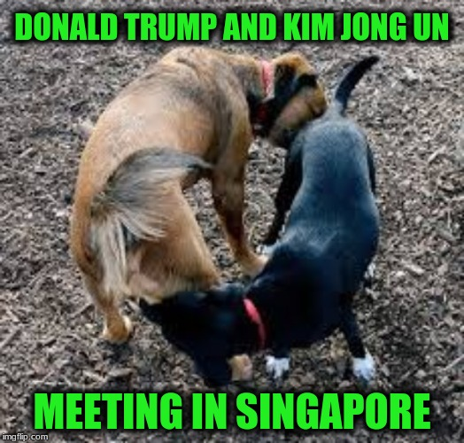 Détente  | DONALD TRUMP AND KIM JONG UN MEETING IN SINGAPORE | image tagged in memes,donald trump,kim jong un,meeting | made w/ Imgflip meme maker