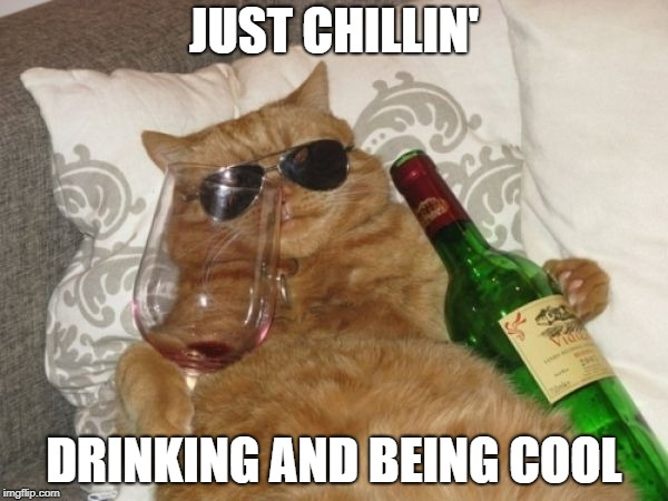 Even cats love to drink! | JUST CHILLIN' DRINKING AND BEING COOL | image tagged in wine cat birthday | made w/ Imgflip meme maker