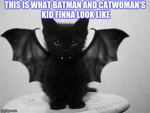 Batcat | THIS IS WHAT BATMAN AND CATWOMAN'S KID FINNA LOOK LIKE | image tagged in memes,funny,batman,catwoman | made w/ Imgflip meme maker