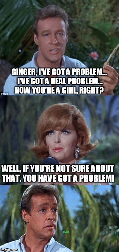 GINGER, I'VE GOT A PROBLEM... I'VE GOT A REAL PROBLEM... NOW YOU'RE A GIRL, RIGHT? WELL, IF YOU'RE NOT SURE ABOUT THAT, YOU HAVE GOT A PROBL | image tagged in gilligans's island ginger  professor | made w/ Imgflip meme maker