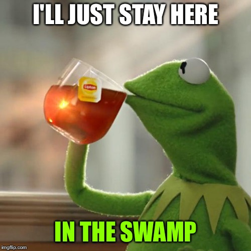 But Thats None Of My Business Meme | I'LL JUST STAY HERE IN THE SWAMP | image tagged in memes,but thats none of my business,kermit the frog | made w/ Imgflip meme maker