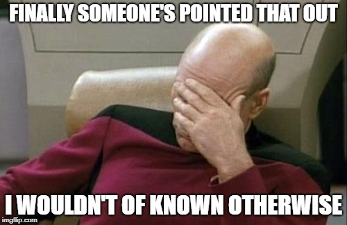 Captain Picard Facepalm Meme | FINALLY SOMEONE'S POINTED THAT OUT I WOULDN'T OF KNOWN OTHERWISE | image tagged in memes,captain picard facepalm | made w/ Imgflip meme maker