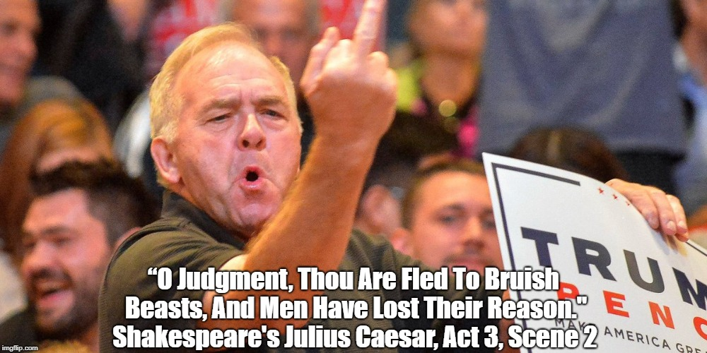 """O Judgment, Thou Are Fled To Bruish Beasts, And Men Have Lost Their Reason."" Shakespeare's Julius Caesar, Act 3, Scene 2 