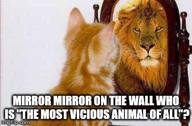 "Mirror mirror on the wall... | MIRROR MIRROR ON THE WALL WHO IS ""THE MOST VICIOUS ANIMAL OF ALL""? 