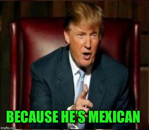 BECAUSE HE'S MEXICAN | made w/ Imgflip meme maker