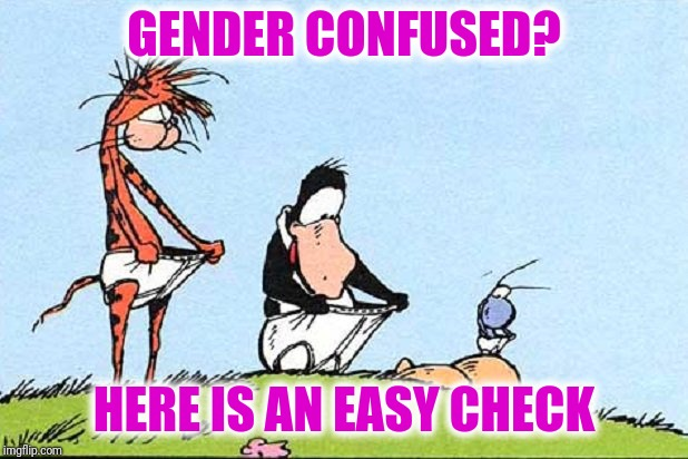 It's quick and easy | GENDER CONFUSED? HERE IS AN EASY CHECK | image tagged in gender | made w/ Imgflip meme maker