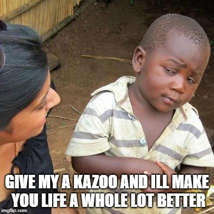 Third World Skeptical Kid Meme | GIVE MY A KAZOO AND ILL MAKE YOU LIFE A WHOLE LOT BETTER | image tagged in memes,third world skeptical kid | made w/ Imgflip meme maker
