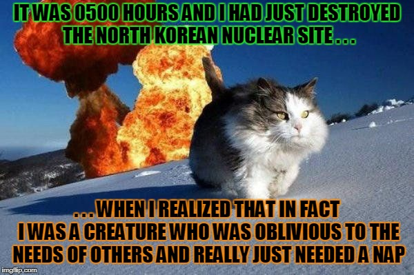 also that I had forgotten to crap in Kim Jong Un's slippers (Cat Weekend, a Landon_the_memer, 1forpeace, & JBmemegeek event) | IT WAS 0500 HOURS AND I HAD JUST DESTROYED THE NORTH KOREAN NUCLEAR SITE . . . . . . WHEN I REALIZED THAT IN FACT I WAS A CREATURE WHO WAS O | image tagged in mission accomplished cat,memes,cat weekend,cats,north korea | made w/ Imgflip meme maker