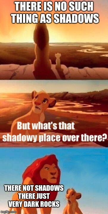 Simba Shadowy Place Meme | THERE IS NO SUCH THING AS SHADOWS THERE NOT SHADOWS THERE JUST VERY DARK ROCKS | image tagged in memes,simba shadowy place | made w/ Imgflip meme maker