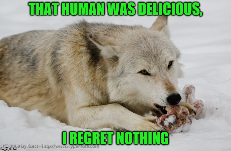 THAT HUMAN WAS DELICIOUS, I REGRET NOTHING | made w/ Imgflip meme maker