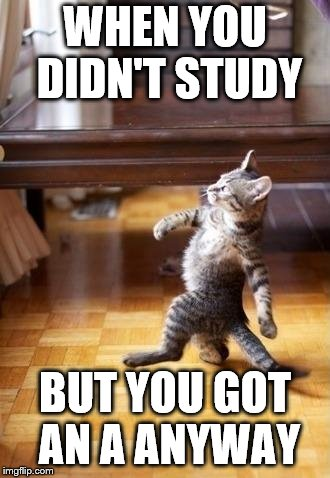 Cool Cat Stroll Meme | WHEN YOU DIDN'T STUDY BUT YOU GOT AN A ANYWAY | image tagged in memes,cool cat stroll | made w/ Imgflip meme maker