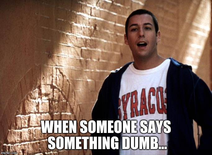 WHEN SOMEONE SAYS SOMETHING DUMB... | image tagged in big daddy adam sandler | made w/ Imgflip meme maker