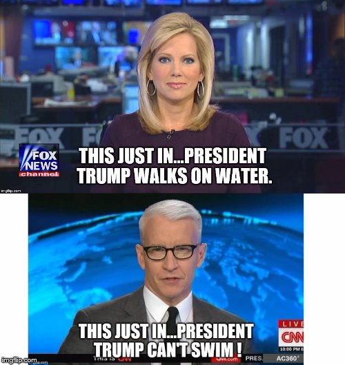 Fox vs Fake News Network | . | image tagged in donald trump | made w/ Imgflip meme maker