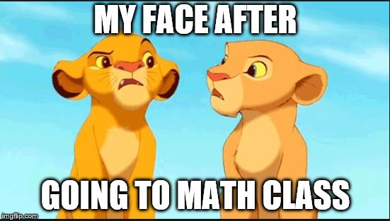 confused lion king | MY FACE AFTER GOING TO MATH CLASS | image tagged in confused lion king | made w/ Imgflip meme maker